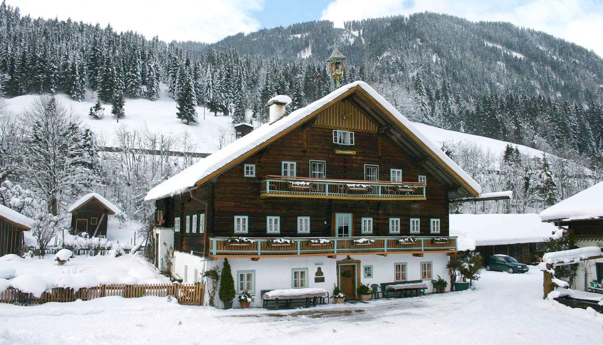 Bauernhofurlaub in Flachau, Flachauwinkl